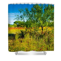 Texas Hill Country Wildflowers Shower Curtain
