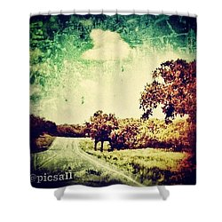 Texas Hwy 29 Shower Curtain