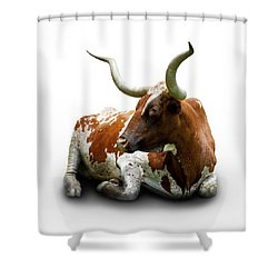 Texas Longhorn Bull Shower Curtain