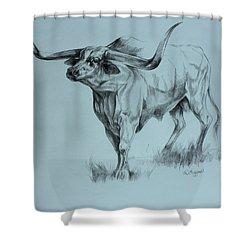 Texas Longhorn Shower Curtain by Derrick Higgins