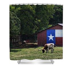 Texas Longhorn Grazing Shower Curtain