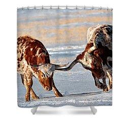 Texas Longhorns Shower Curtain by Lena  Owens OLena Art