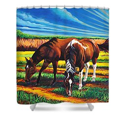 Texas Quarter Horses Shower Curtain