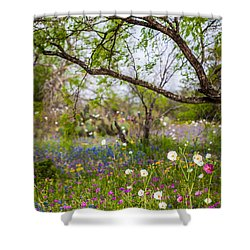 Texas Roadside Wildflowers 732 Shower Curtain by Melinda Ledsome