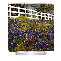 Texas Spring Shower Curtain by Brian Kerls