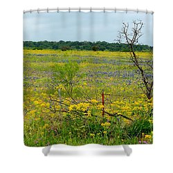 Texas Wildflowers And Mesquite Tree Shower Curtain