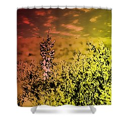 Texas Yucca Flower Shower Curtain