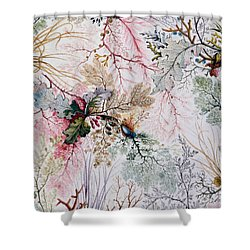 Textile Design Shower Curtain by William Kilburn