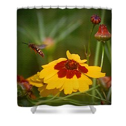 Shower Curtain featuring the photograph Textured Bee by Leticia Latocki