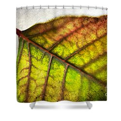 Textured Leaf Abstract Shower Curtain by Scott Pellegrin
