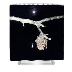 Shower Curtain featuring the photograph Thank You Lord For Saving Me by Donna Brown