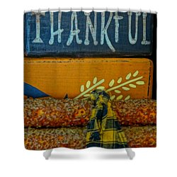 Thankful Country Arts And Crafts Photograph By Dan Sproul