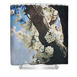 That March Shower Curtain by Laurie Search