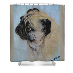Pug's Worried Look Shower Curtain