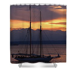 The Adventuress Cruise Shower Curtain by Kym Backland