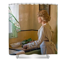 The American Dream Shower Curtain