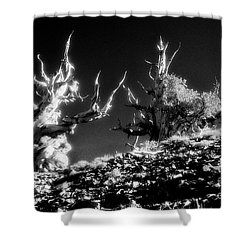 The Ancients - 1001 Shower Curtain by Paul W Faust -  Impressions of Light
