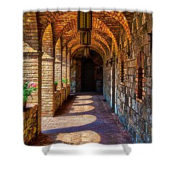 The Arches Shower Curtain by Richard J Cassato