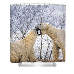 The Argument Shower Curtain by LeeAnn McLaneGoetz McLaneGoetzStudioLLCcom