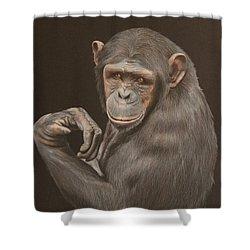 The Arm Wrestler - Chimpanzee Shower Curtain