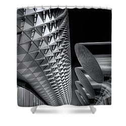 The Armadillo Awakes Shower Curtain