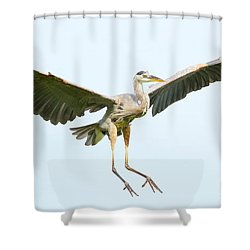 The Arrival Shower Curtain by Heather King