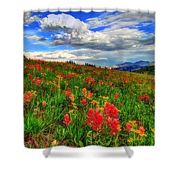 The Art Of Wildflowers Shower Curtain