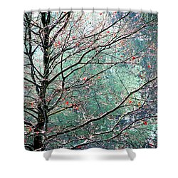 Shower Curtain featuring the photograph The Aura Of Trees by Angela Davies