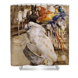 The Aviary, Clifton, 1888 Shower Curtain