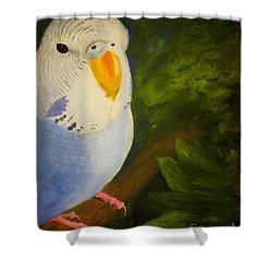 The Baby Parakeet - Budgie Shower Curtain