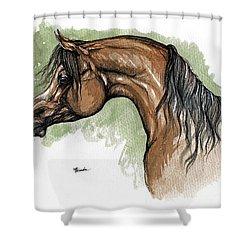 The Bay Arabian Horse 12 Shower Curtain by Angel  Tarantella