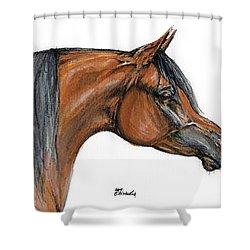 The Bay Arabian Horse 18 Shower Curtain by Angel  Tarantella