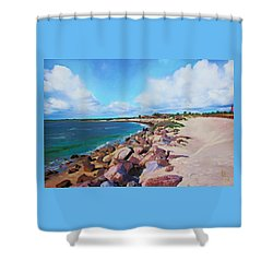 The Beach At Ponce Inlet Shower Curtain