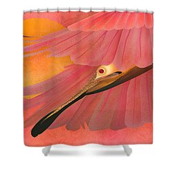 The Beauty Flight - Limited Edition 1 Of 10 Shower Curtain