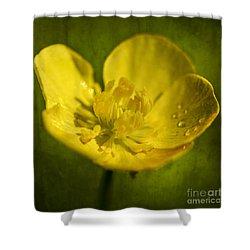 the beauty inside II Shower Curtain by Hannes Cmarits