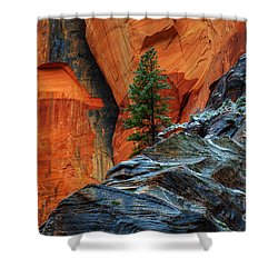 The Beauty Of Sandstone Zion Shower Curtain