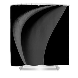Beauty Of Simplicity Shower Curtain by Kellice Swaggerty