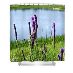 Shower Curtain featuring the photograph The Beauty Of The Liatris by Verana Stark