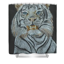 Shower Curtain featuring the pastel The Bengal by Carol Wisniewski