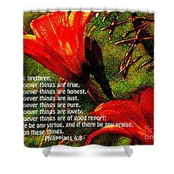 The Bible Philippians 4 Shower Curtain