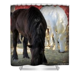 The Big Girls Shower Curtain