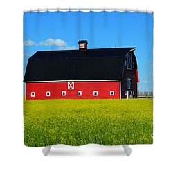 The Big Red Barn Shower Curtain by Bob Christopher