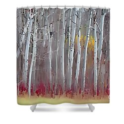 The Birches - Single Shower Curtain by Andrea Kollo