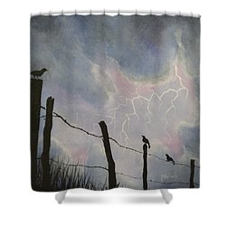 The Birds - Watching The Show Shower Curtain