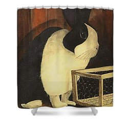 The Black And White Dutch Rabbit  2 Shower Curtain