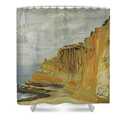 The Black Goose At Flat Rock Shower Curtain by Joseph Demaree