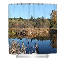 The Blue Mirror Shower Curtain by E Faithe Lester