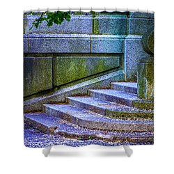 The Blue Stairs Shower Curtain