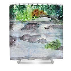 The Bog On Tupper Lake Shower Curtain