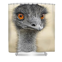 Shower Curtain featuring the photograph The Boss by Dyle   Warren